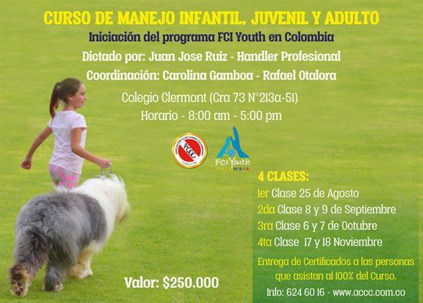 CURSO DE MANEJO INFANTIL, JUVENIL Y ADULTO